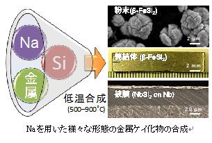 無機固体材料合成研究分野 山根...