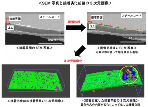 SEM写真と接着劣化前後の3次元画像