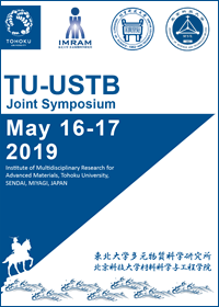 20190516-17_TU-USTB_Joint Sympo